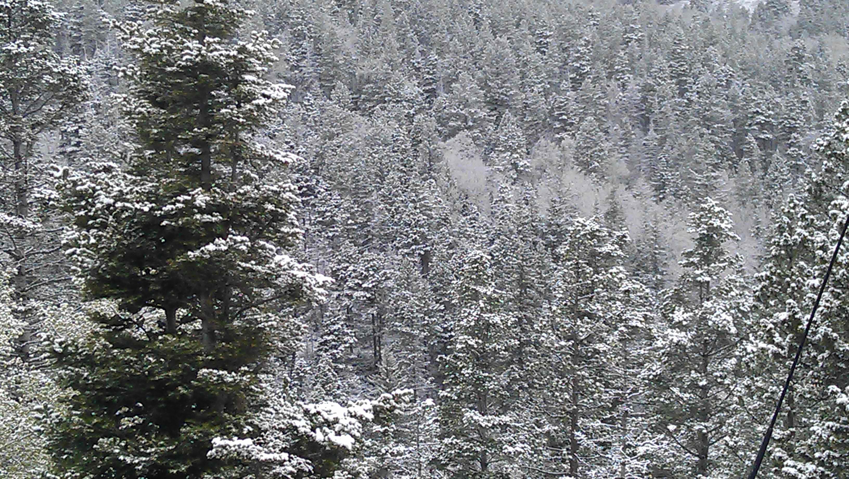snow1 Julian Bond via YouTube screenshot. Topics: gay marriage ♦ National ...